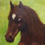 16. 'Paard' acryl